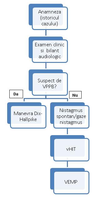 algoritm vertij