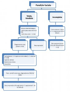 Diagnosticul si algoritmul decizional al paraliziei faciale idiopatice